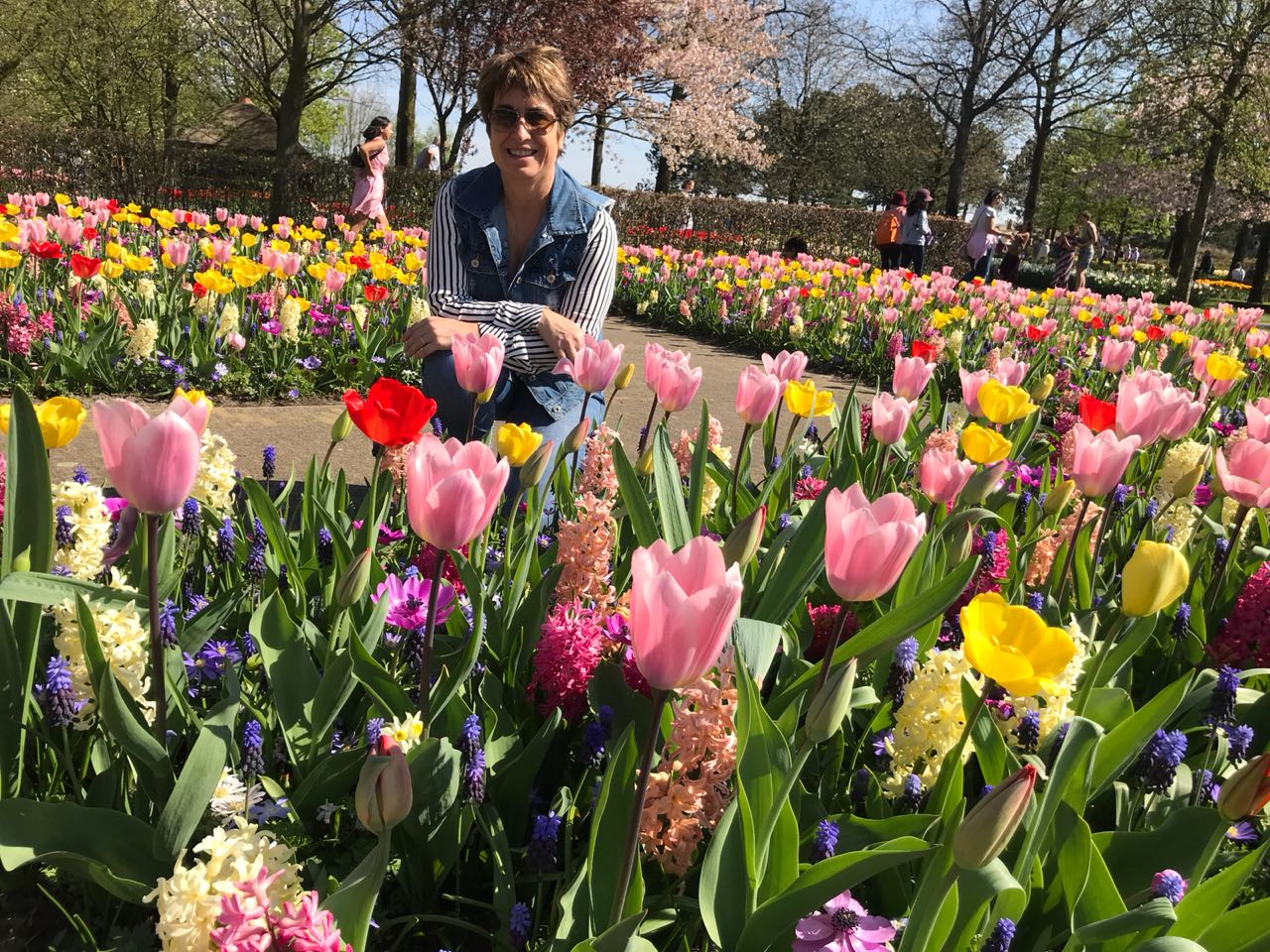 Keukenhof Flower Fields Tulip touroperator GO experience Holland and Belgium