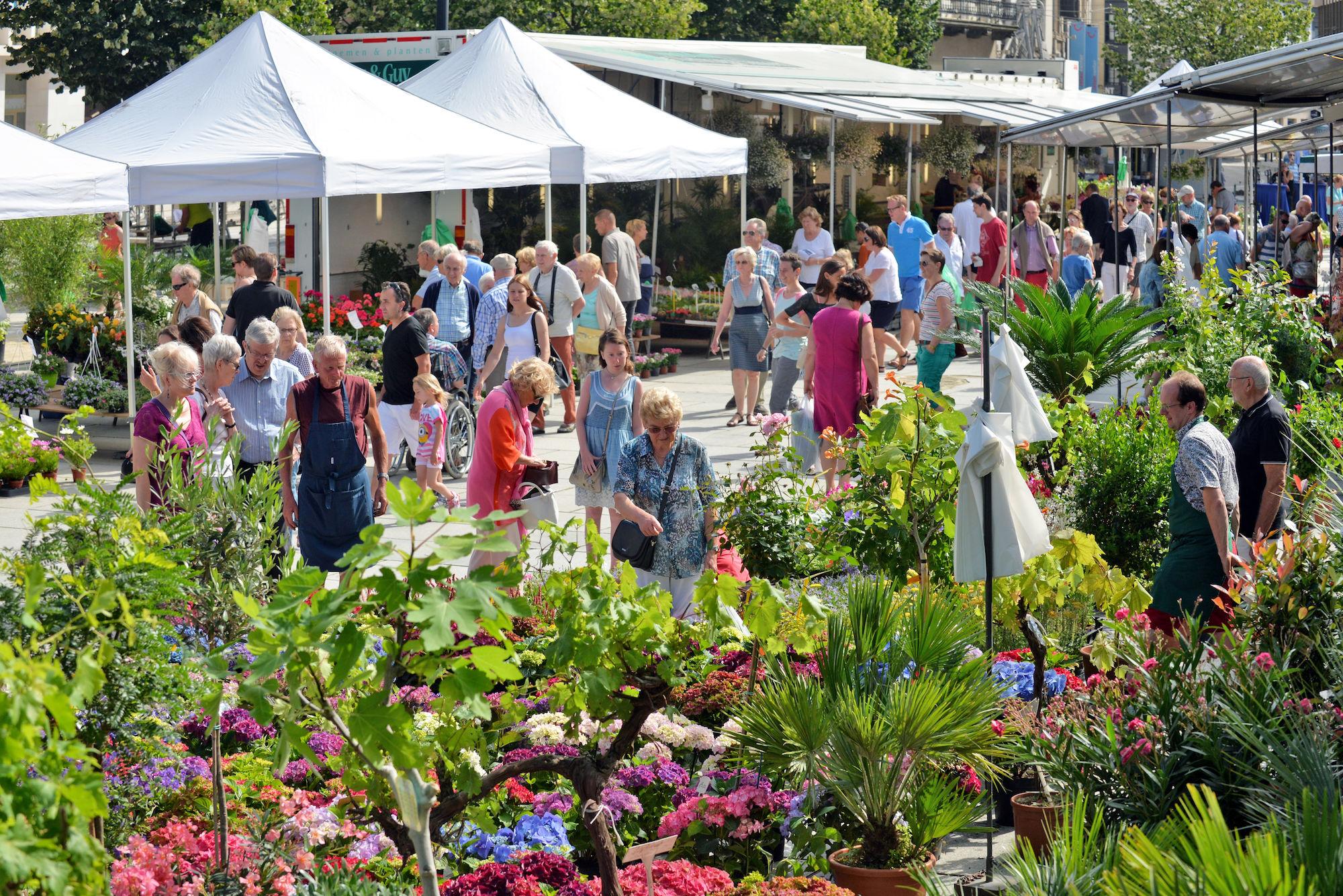 Bloemenmarkt Flower market Ghent Gent Belgium GO Experience travel touroperator reisen turismo