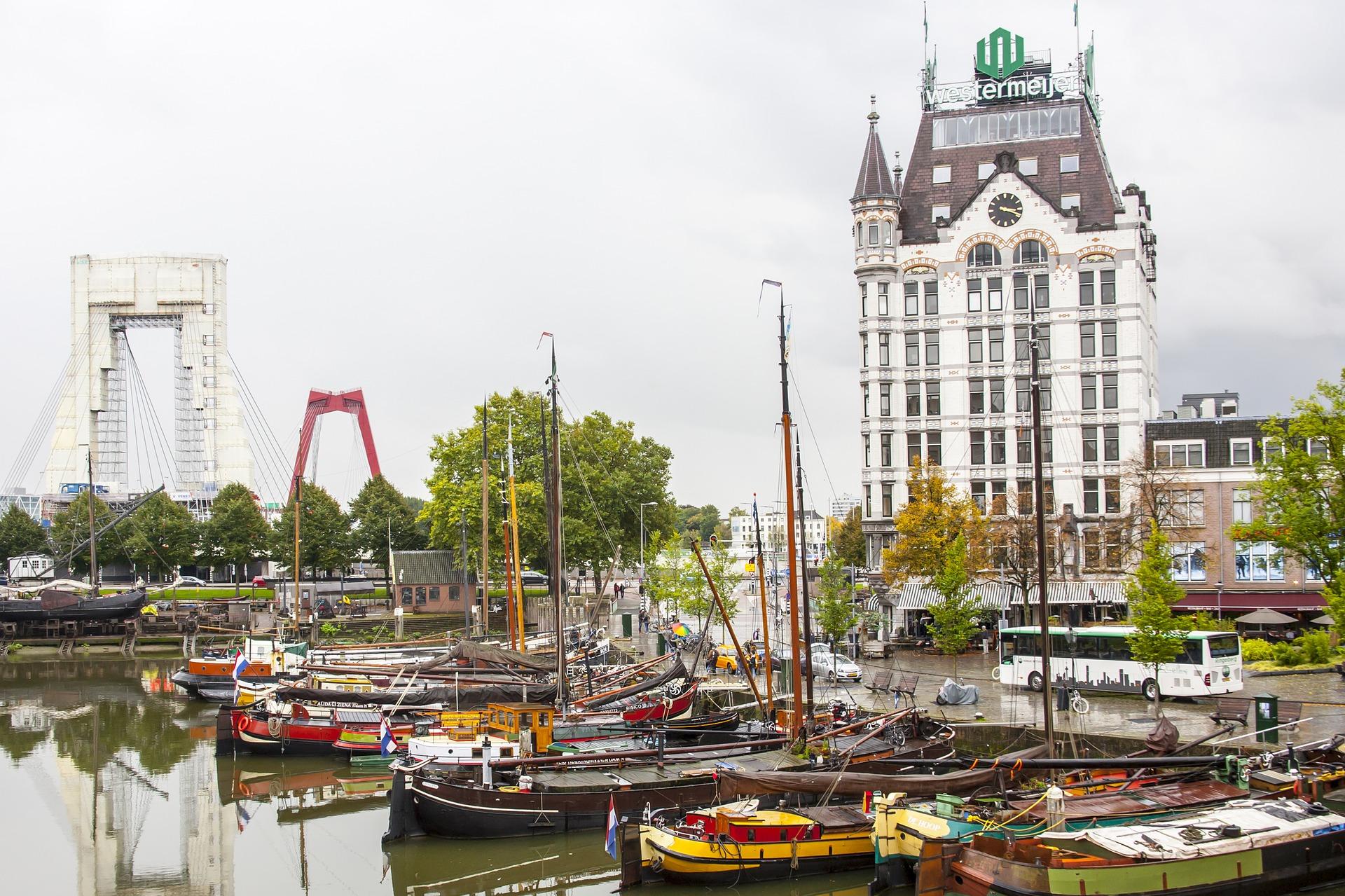 Rotterdam Go Experience
