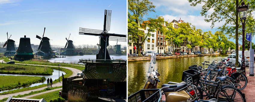 Traditional Dutch Icons Tulips Wooden Shoes Delft Blue Kinderdijk Windmills Delta Works Cheese Canals Bicycles GO Experience guided tours Touroperator Holland and Belgium