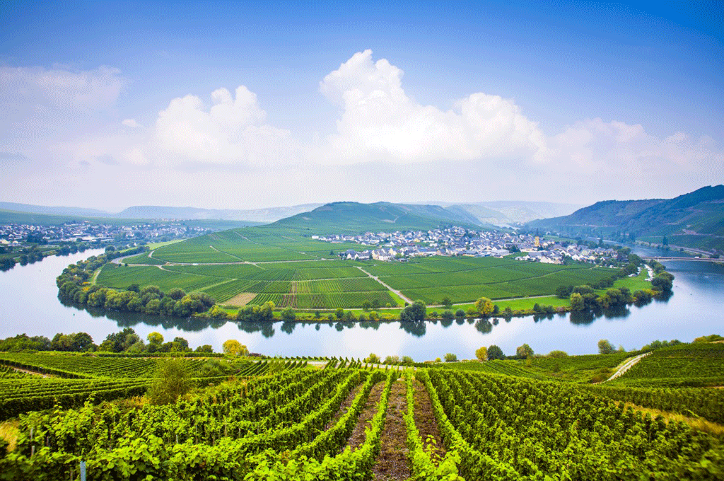The Moselle Region