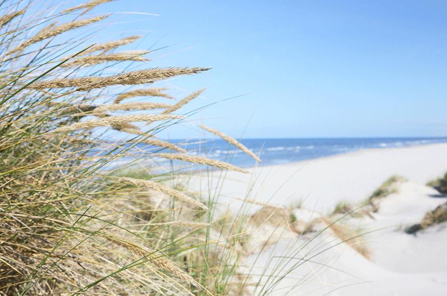 Friesland as a travel destination